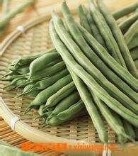 菜豆怎么做好吃 菜豆的做法步骤教程